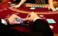 casino_tiger
